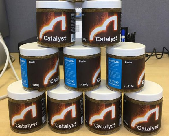 spottedfin-thecatalyst-paste